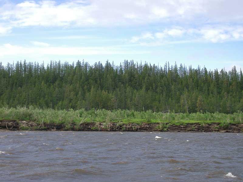 Усть-Кут.RU : Река Лена