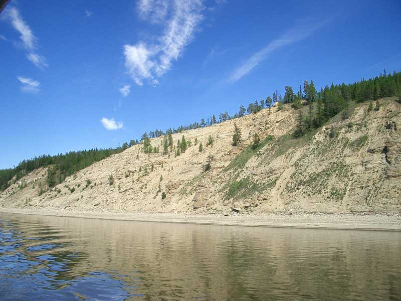 Усть-Кут.RU : Фауна скалистых берегов