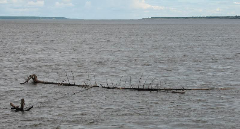 Усть-Кут.RU : Река Лена, Ленские пейзажи