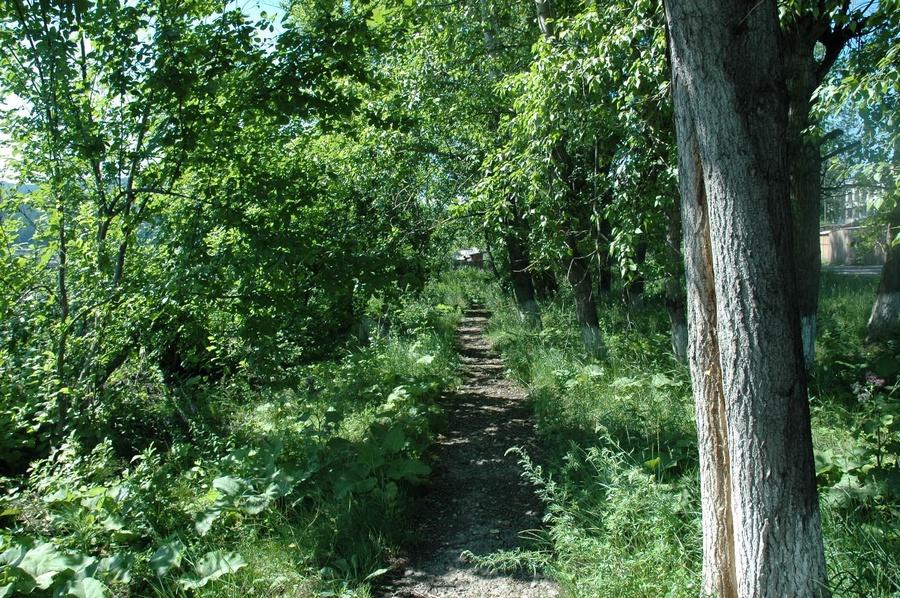Усть-Кут.RU : Вид парка