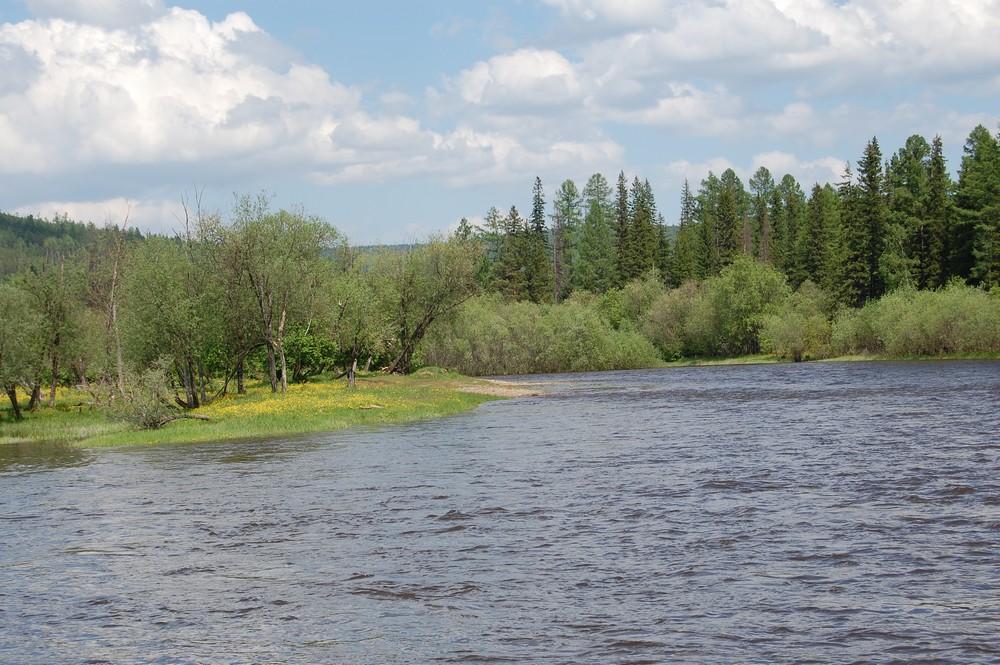 Усть-Кут.RU : Танин Ю.А. Река Ния в Зведном