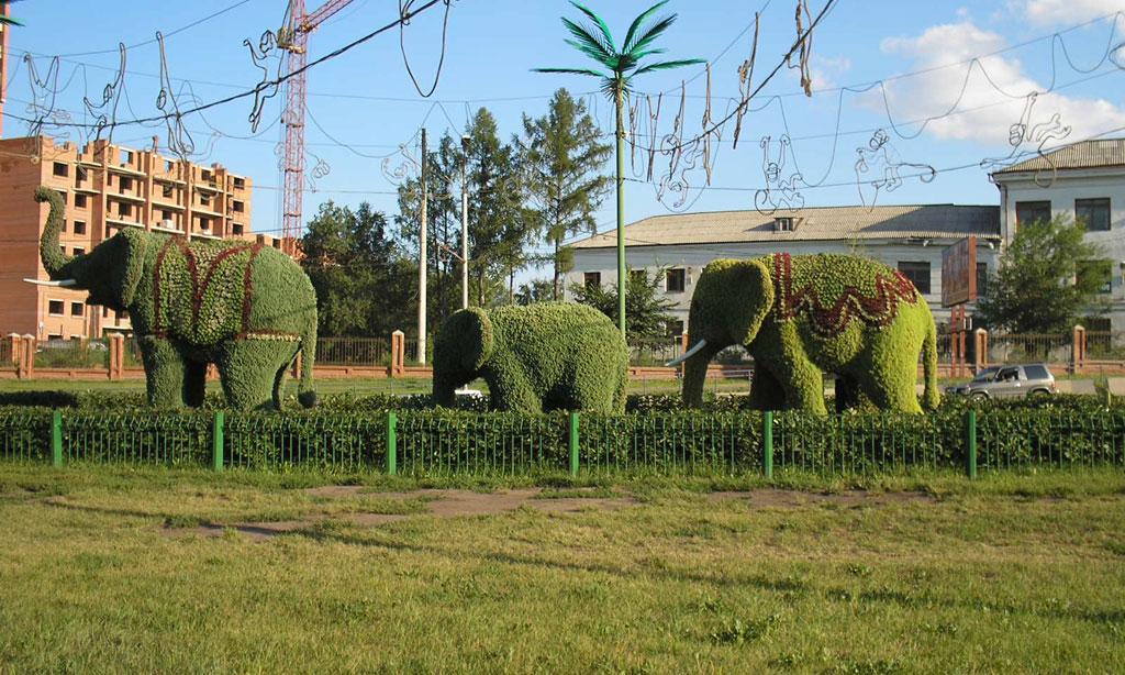 Усть-Кут.RU : слоны в Красноярске
