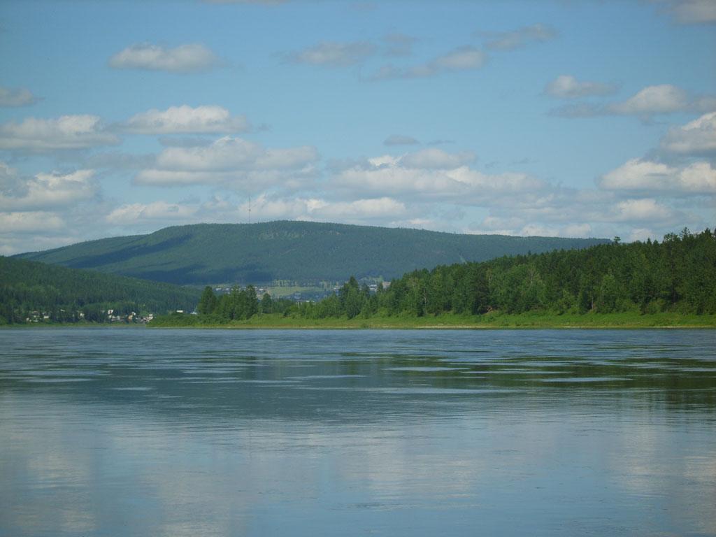 Усть-Кут.RU : Река, лес