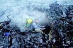 Камчатка. Ключевской природный парк, побережье Тихого океана, Мутновско-Гореловская группа вулканов